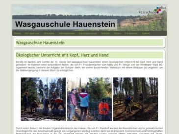 Wasgauschule Hauenstein - Realschule plus